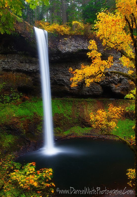 ~~A Moment of Silence ~ autumn, Silver Falls State Park, Sublimity, Oregon by Darren White~~