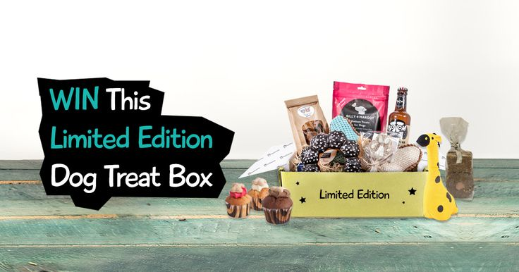 Simply enter your details and like our Facebook page for your chance to WIN this Exclusive, Limited Edition Treat Box from Puppy Essentials. Because dogs deserve spoiling!