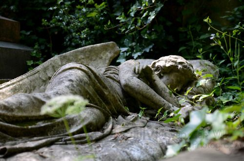 A sleeping angel in Highgate cemetery.