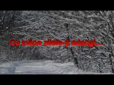 Cu mâne zilele-ți adaogi...  Mihai Eminescu (cu subtitrare în română)