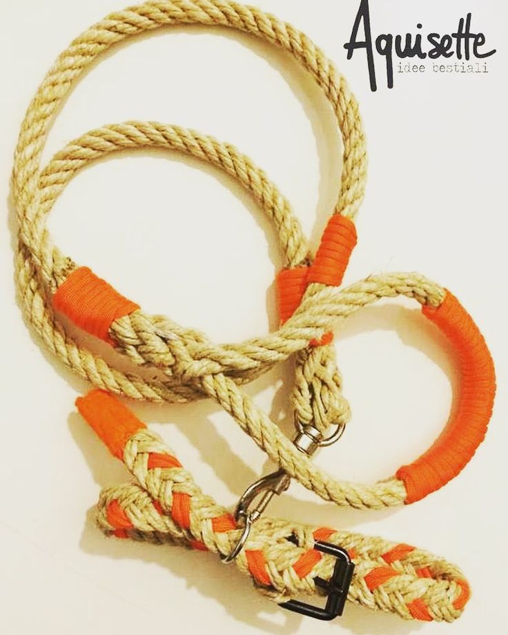 Guinzaglio e collare coordinato in canapa naturale e paracord arancio... Che grinta #aquisette #accessori #animali #cani #cane #guinzaglio #collare #corda #canapa #paracord #accessories #leash #dogleash #collar #rope #doglover #dogstagram #pet #petlover #petsagram #pezzounico #handmade #happy_pet #fattoamano #madeinitaly by aquisette_irenecenton