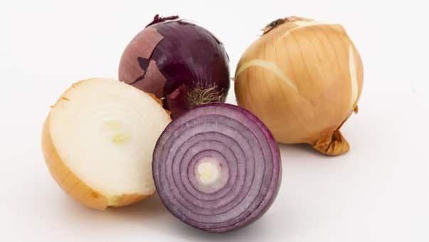 نسبة الكربوهيدرات في البصل Onion Vegetables Food