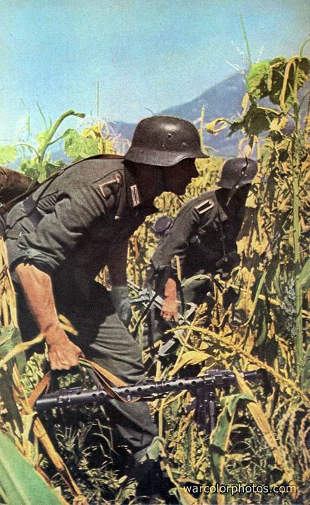 MG 34 machine gun    why are we always having to fight  dogs fight because they urinated somewhere arent we better then this