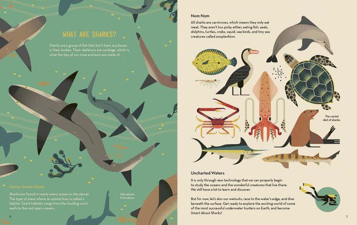 Smart about Sharks Owen Davey Illustration (Dengan gambar)