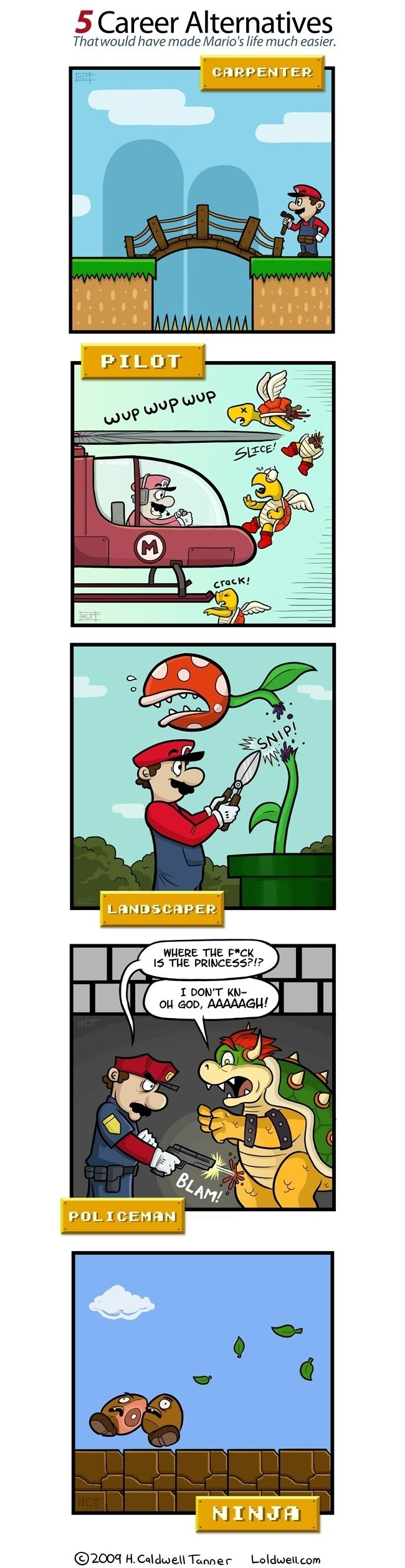 Five Alternative Career Choices that May have made Mario's Life Easier