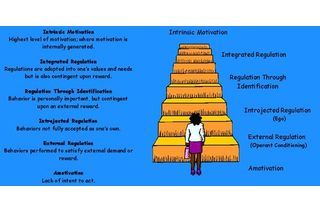 Group Activities for Maslow's Hierarchy of Needs | eHow