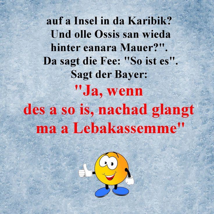 Bayer Witze
