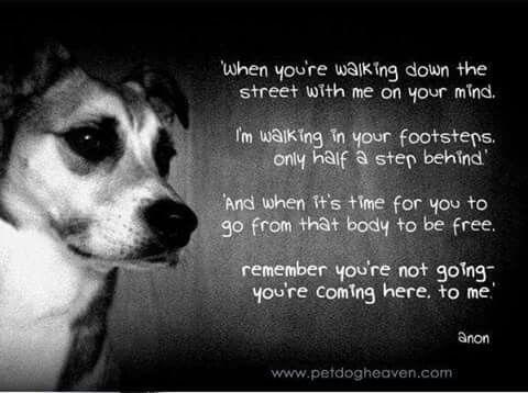 When you're walking