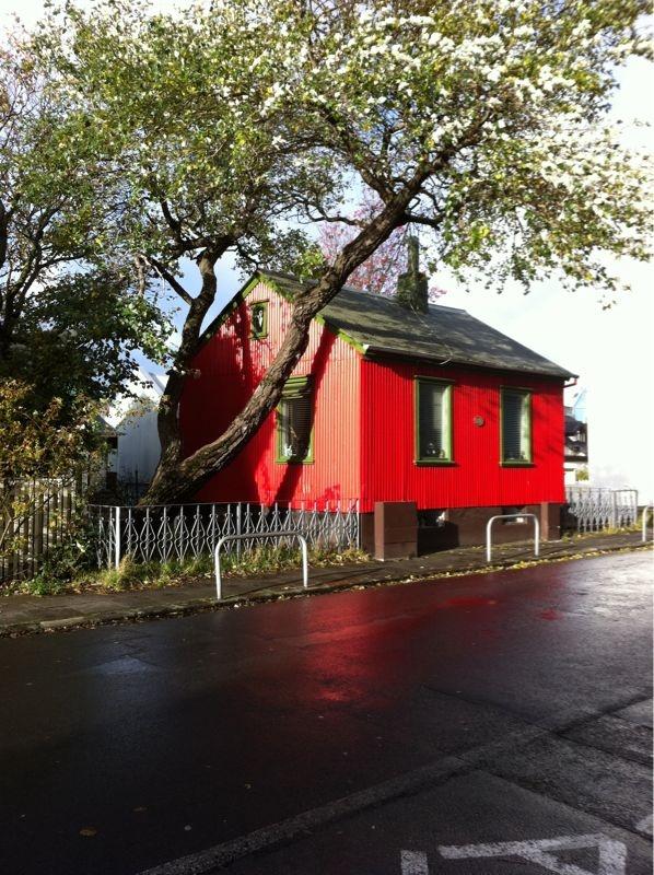 reykjavik. i love it there #reykjavik #woodhouse