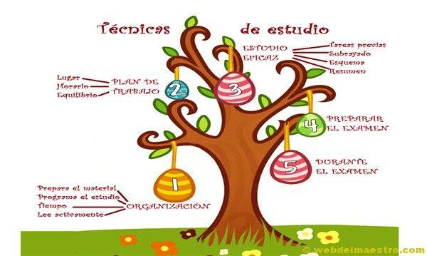 II>★★★★ Técnicas: estudio primaria - Recursos educativos y material didáctico para niños de primaria. Descarga Técnicas: estudio primaria gratis.