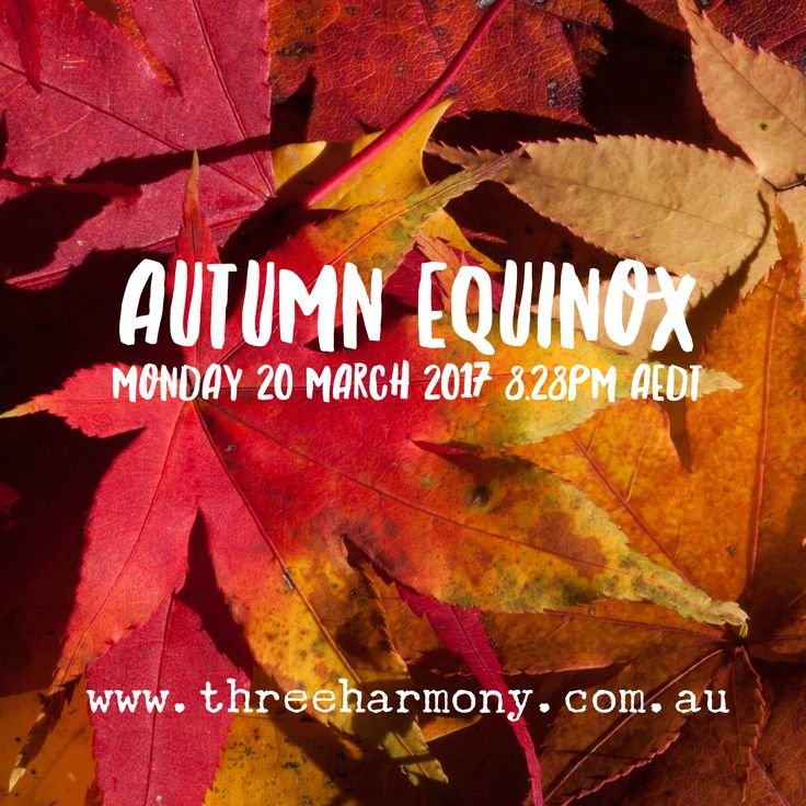 We've just passed the Autumn Equinox in the Southern Hemisphere - oh the winds of change! More on what to do this season on the Three Harmony blog.