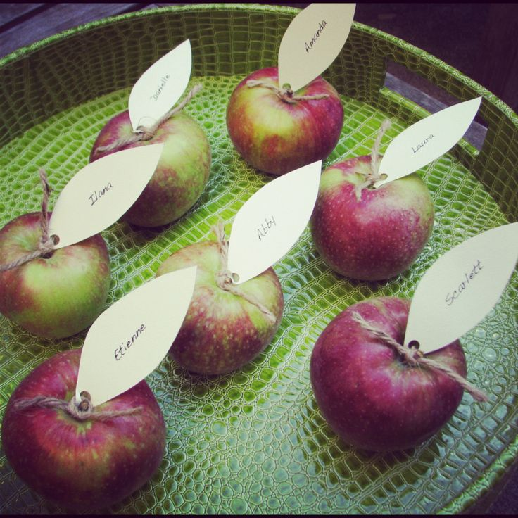 Using apples as place card holders is an inexpensive and simple way to add some fall to your table.  They're perfect for any autumnal party, whether it's a fall bridal showers, engagement party, di...