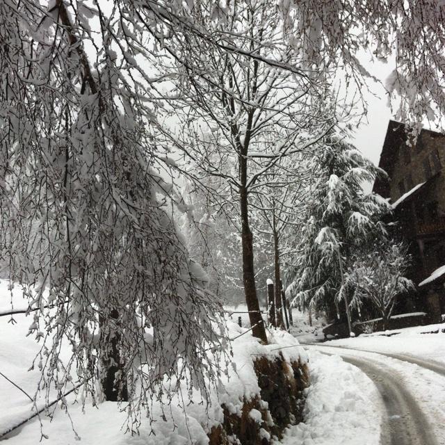 White Ordino - snow in Andorra