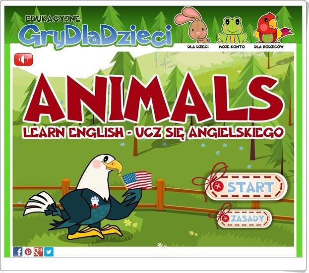 Animals (Grydladzieci.edu.pl)