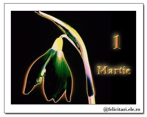 1+Martie