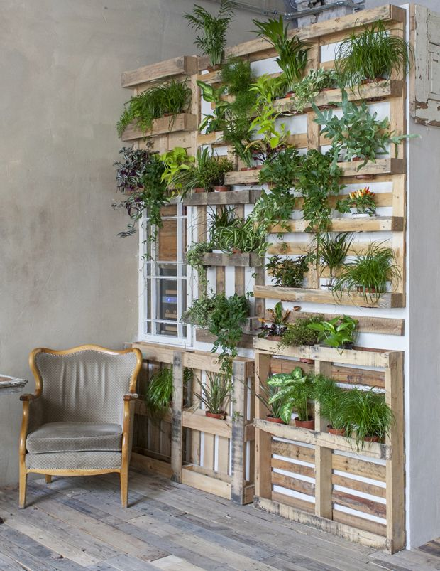 Grønne planter er gode for indeklimaet, skaber en skøn stemning, og så er det meget moderne at indrette med planter lige nu. Vi guider dig her til, hvordan du nemt kan lave en flot plantevæg derhjemme.