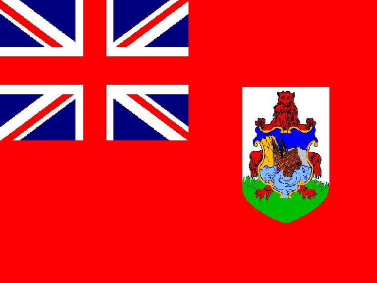 Barbados Flag Shorts