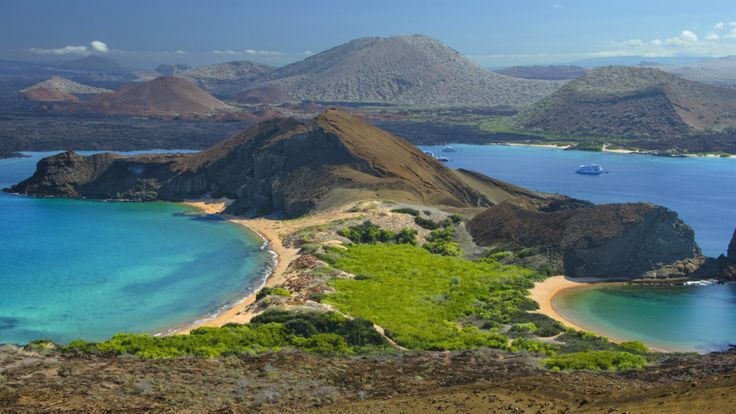 The Galapagos Islands are a model of how to adapt to survive.