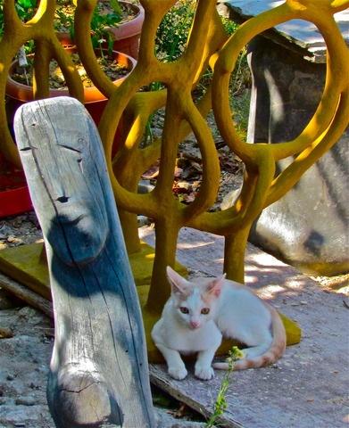Animals in Bodrum, Turkey (queen statue field statues cat) - a photo by ESRA SIRMAN
