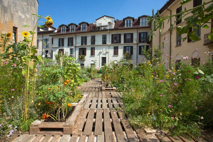 Garden among courtyards. Piuarch, Orto Fra i Cortili, Milano
