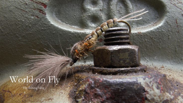 World on Fly New Blog about Fly fishing and Fly tying. http://worldonfly.tumblr.com/