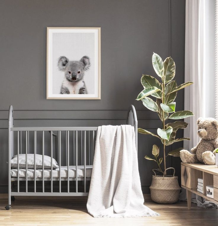 Baby Koala Print, Australian Nursery Animal Decor – Printed Wall Art – Digital Download
