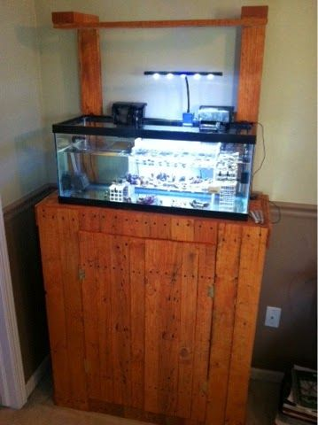 25 best ideas about 20 gallon aquarium stand on pinterest for 20 gallon fish tank dimensions