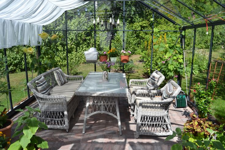 Kasvihuone heinäkuu 2013 - Greenhouse July 2013