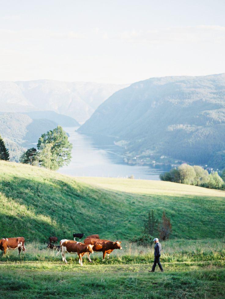 Erich McVey Wedding Photography   Ulvik, Norway
