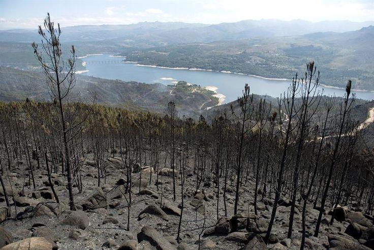 Libertad vigilada para el presunto autor de 15 incendios en Ourense