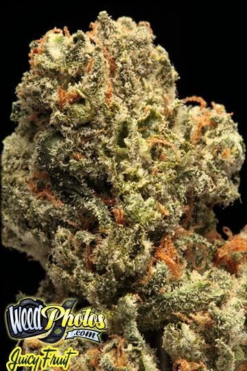 how to choose cannabis e-juice