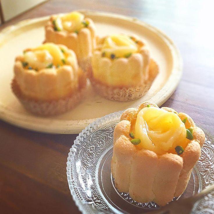 インスタで話題!おしゃれな「シャルロットケーキ」はクリスマスにもおすすめ♫ - macaroni