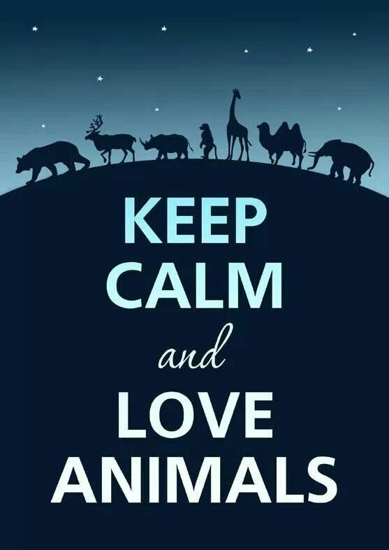 Love animals!!!!!