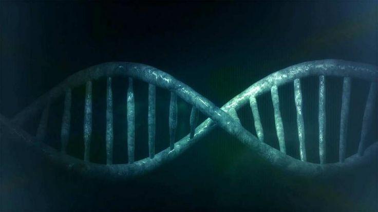 Encuentran el primer gen asociado a un defecto de las válvulas cardíacas