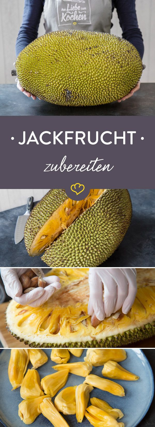 Was ist eigentlich eine Jackfrucht? Was lässt sich mit ihr machen? Erfahre hier alles Wissenswerte, wie du sie richtig zubereitest und tolle Rezeptideen..