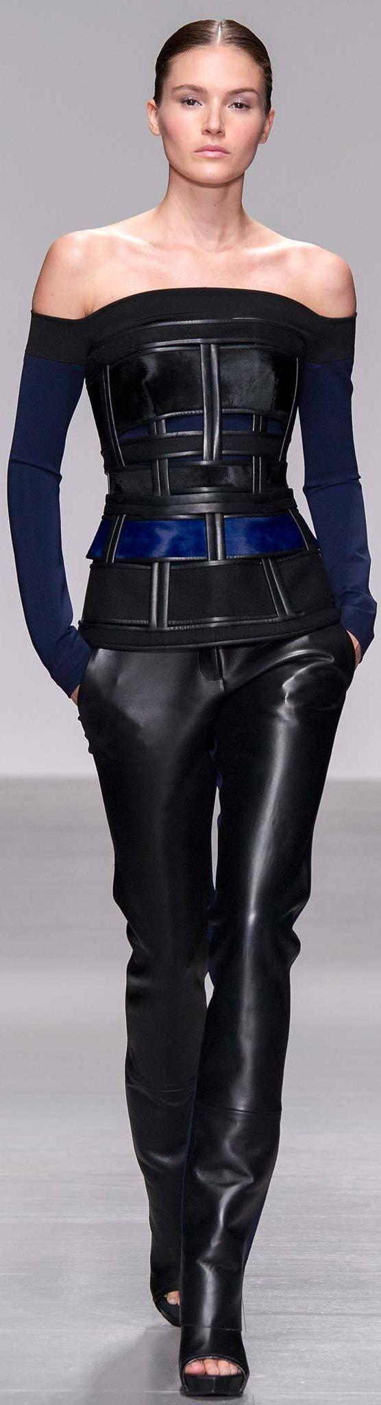 David Koma Fall 2014 Ready-to-Wear
