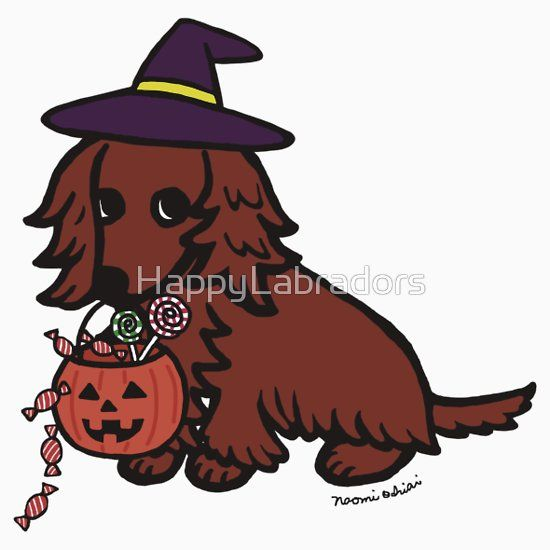 Cute #Halloween #Dachshund Witch's Hat #Doxie #Tshirt #Gifts #halloweenparty #cartoon #dog