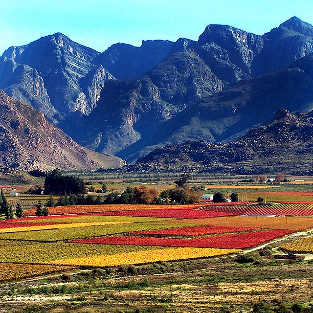 Don't forget to come enjoy our autumn colors, too! South Africa.: