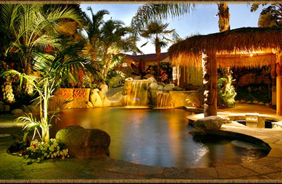 26 best images about florida plants landscaping on for Pool design naples fl