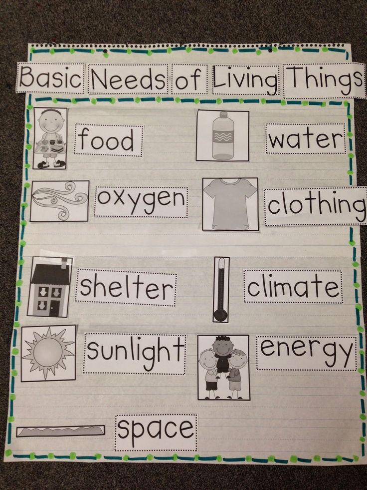 Basic Needs Science Pinterest