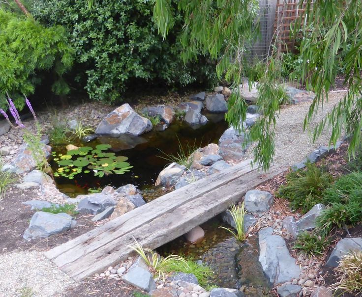 Stream leading into a fish pond.