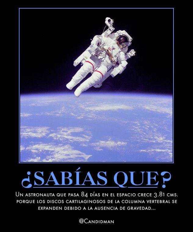#Curiosidades Un #Astronauta que pasa 84 días en el espacio crece 3.81 cms. porque los discos cartilaginosos de la columna vertebral se expanden debido a la ausencia de #Gravedad... @Candidman