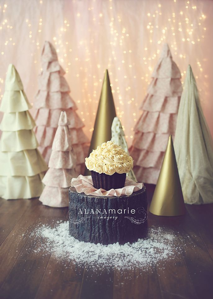 winter ONEland theme for 1st birthday cake smash portrait session. large fabric cone trees. pink & gold!  © Alana Marie Imagery www.alanamarieimagery.com www.facebook.com/AlanaMarieImagery