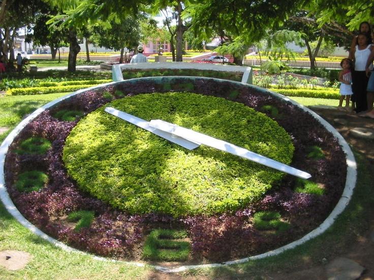 Garanhuns (Pernambuco). Relógio de flores.