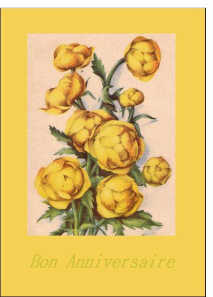 Carte bon anniversaire avec des fleurs jaunes pour envoyer for Envoyer fleurs par internet