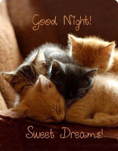 Good night my love❤ Sleep well and meet you tonight 😊😘❤. LUMUWUNUTU XO…