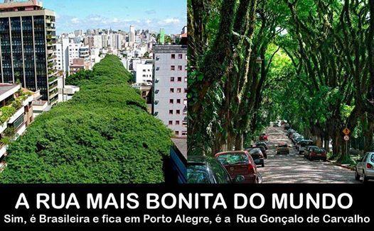 """A rua que ficou famosa por ser """"a mais bonita do mundo"""" fica no Brasil   Em meio a um grande túnel de árvores está a rua Gonçalo de Carvalho, em Porto Alegre, que ficou conhecida como """"a rua mais bonita do mundo"""". São quase 500 metros de calçadas onde mais de 100 árvores da espécie Tipuana estão enfileiradas. Algumas chegam a altura de um prédio de 7 andares fazendo com que a vista de cima seja ainda mais surpreendente.  Os moradores mais antigos contam que as Tipuanas foram plantadas na ..."""