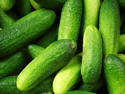 Gherkin Cucumbers Ideal for Pickling