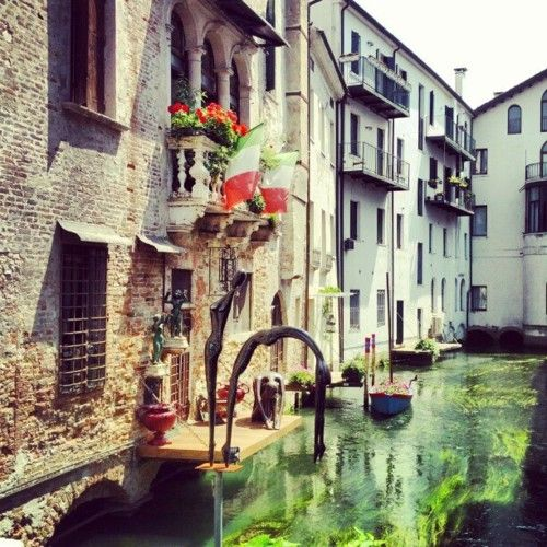 Treviso - where you can taste the typical dishes with Radicchio