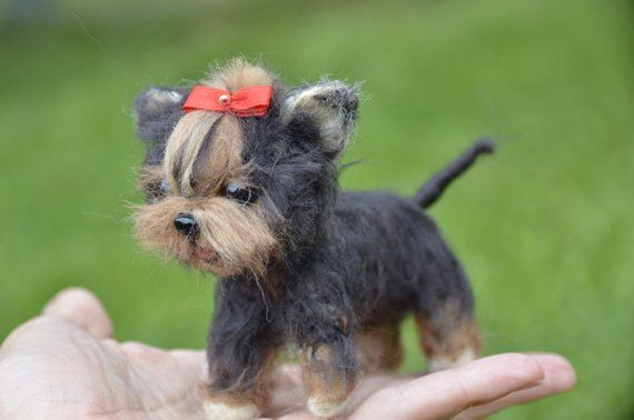 Any Simple Physique Resting It Has The Travel Among Securely Hurt Biceps Gripping Bias Legs Along With Shoulders Foot Curled Inw In 2020 Baby Yorkie Puppy Art Yorkie